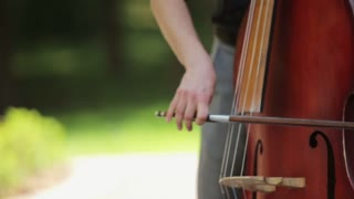 The musician plays a double bass