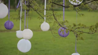 wedding decorations.white Chinese lanterns in the trees