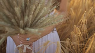 young woman holding a bunch of wheat ears in a field at sunset.Slow motion