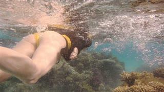Free diver underwater over vivid coral reef