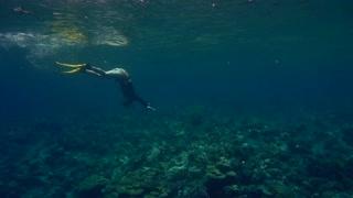 Freediver diving underwater