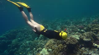 Freediver on corals in Red sea