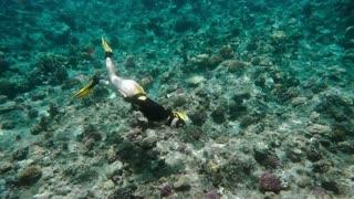 Pretty Free diver enjoying sea life