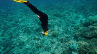 Woman free diving among corals