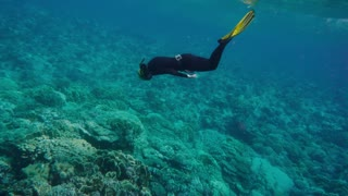 Woman free diving On a coral reef