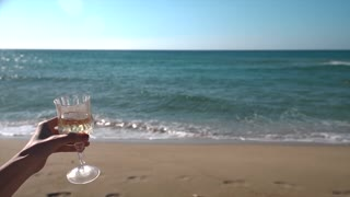Women Cheers with wine glasses in a sunny beach