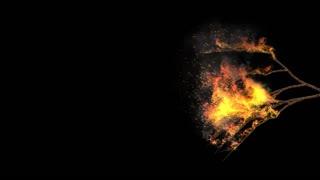 Edge of Seasons on Fire Looping 1080p