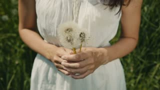 young girl holding in the hands a bouquet of white dandelions