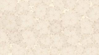 Beige backgroun, Video Animation