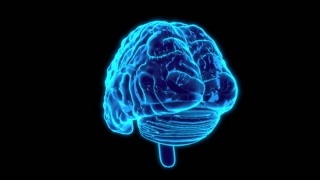 Artificial Intelligence Brain Hologram Looping Background