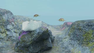 Sea Turtles Diving Encounter in Underwater Rocky Canyon.  High quality detailed 3d animation.