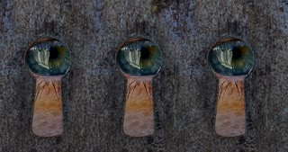 3 human eyes looking through 3 separate keyholes.