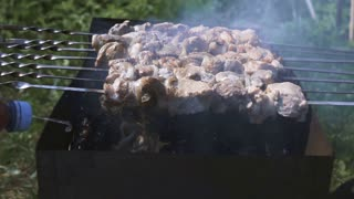 Roasting fresh juicy shishkebab at the open fire on skewers on the brazier. Spraying a flammable liquid into barbecue for better burning. Super slow motion shooting. Green grass and trees on