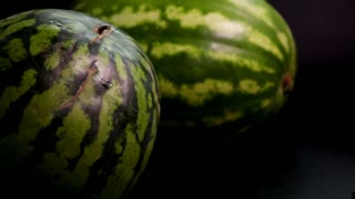 Slow motion: two fresh striped green huge big tasty watermelons at black surface and bakground. First slowly rolls by the flor left to right. middle shooting tripod