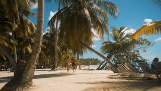 4k ultrahd. Young pretty stunning ideal Sexy woman and man walking near palm trees on white beach in Saona island dominican republic. Sunny midday wideshot. No faces. Relaxing