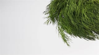 Big bunch of green fresh dill shaking in the air. Super slow motion shot on white bg isolated. high speed camera