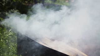 White cloudly smoke with fire flame burn wood sticks in braizer in super slow motion. High-speed camera shooting. Green trees and bushes on background. Closeup