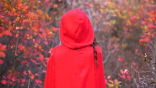 Young gorgeous brunette witch with red cloak in the mystical autumn forest.