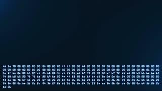 Programming HEX code running down in terminal