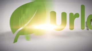 Just Echo Logo Reveal