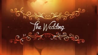 The Wedding Video Show