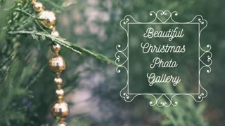 Beautiful Christmas Photo Gallery