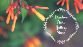 Creative Photo Gallery Show