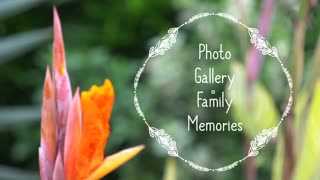Photo Gallery Family Memories