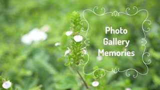 Photo Gallery Memories