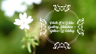 Photo Or Video Gallery Slideshow Billion Wedding