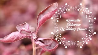 Romantic Slideshow Wedding Power