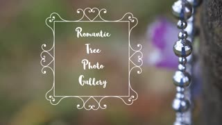 Romantic Tree Photo Gallery