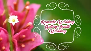 Romantic Wedding Gallery Innate Wedding