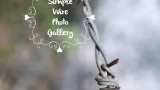 Simple Wire Photo Gallery