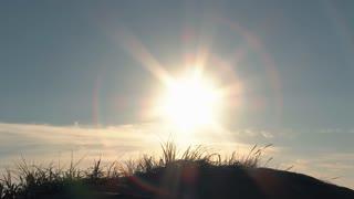 Clear Sky Sun Over Sand Dune Scenic