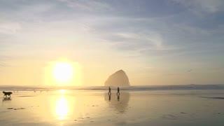 Couple With Dog Enjoy Sunset Beach