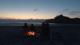 Couples Enjoy Beach Fire At The Oregon Coast