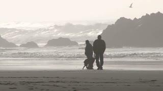 Dog Lover Couple Walking Beach