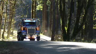 Dump Truck Driving Forest Road 2