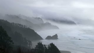 Forest Fog And Ocean Rain Landscape Scenery