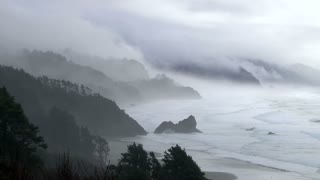 Forest Fog And Ocean Rain Time Lapse