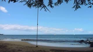 Happy Man On Ocean Swing