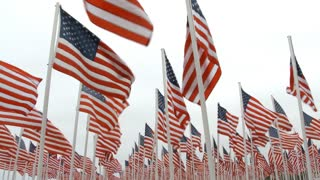 Hundreds Of USA Flags Blowing In The Wind