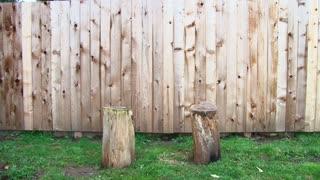 Karate Chop Man Splits Log