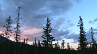 Lightning Storm Cloud In Forest Time Lapse