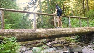 Log Bridge Wilderness Man Hiking