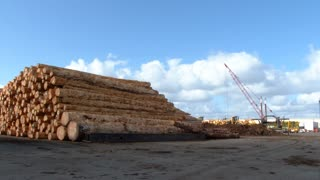 Logging Industrial Area Shipping Yard
