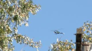 News Helicopter Flying Low In Neighborhood