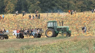 People In Pumpkin Patch At Farm In Autumn