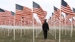 Person Walking Down Row Of Usa Flags